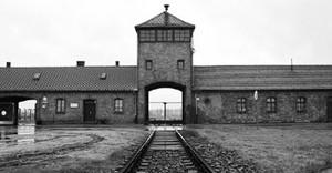 Auschwitz141